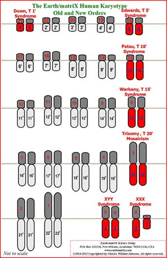 Table of Chromosomes, Genes and Related Diseases